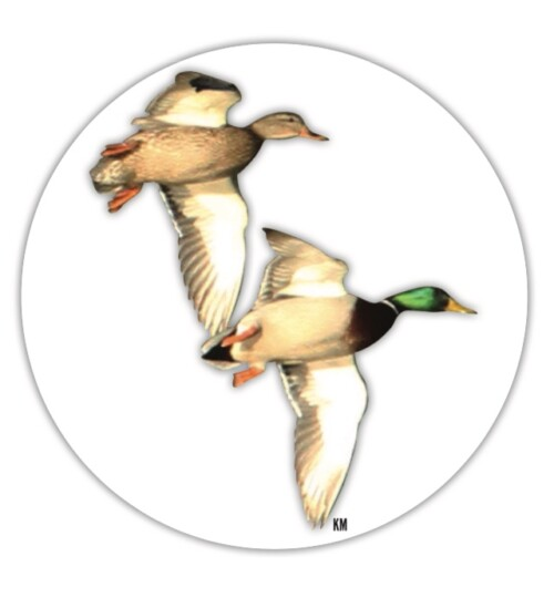 decal with two ducks